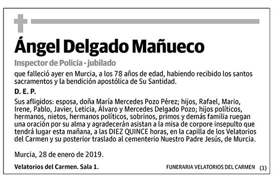 Ángel Delgado Mañueco