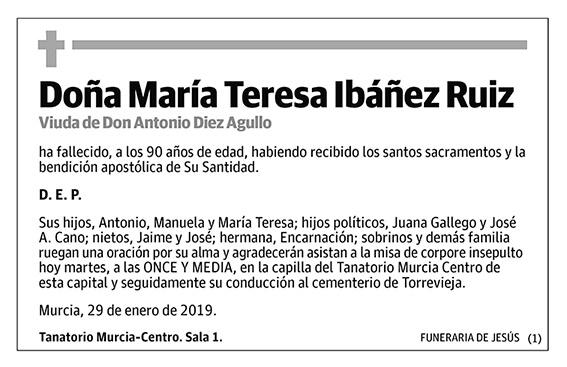 María Teresa Ibáñez Ruiz