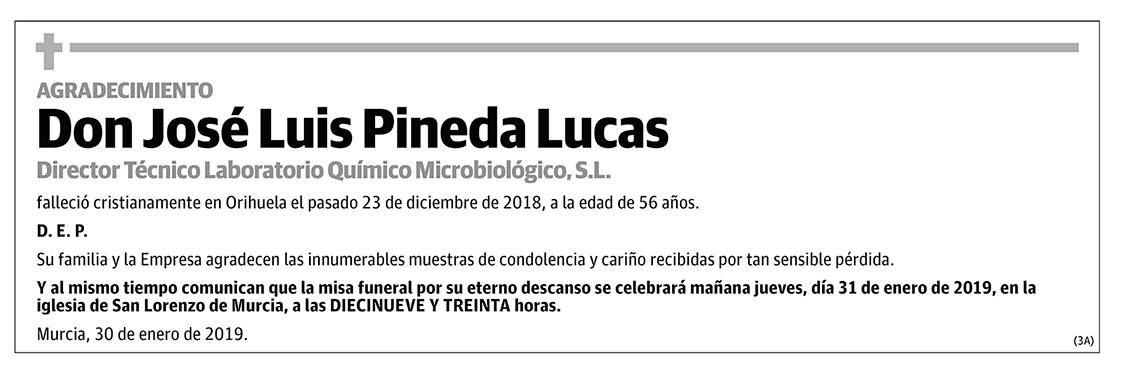 José Luis Pineda Lucas