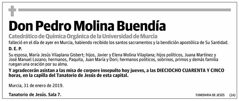 Pedro Molina Buendía