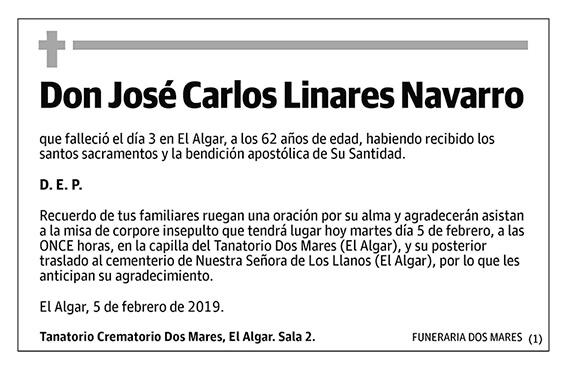 José Carlos Linares Navarro