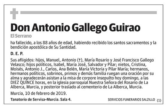 Antonio Gallego Guirao