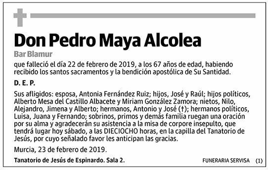 Pedro Maya Alcolea