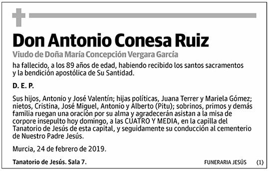 Antonio Conesa Ruiz