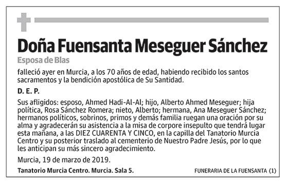 Fuensanta Meseguer Sánchez