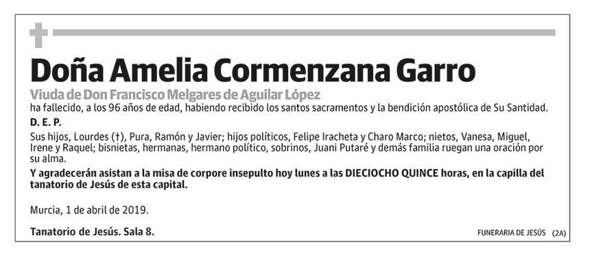 Amelia Cormenzana Garro