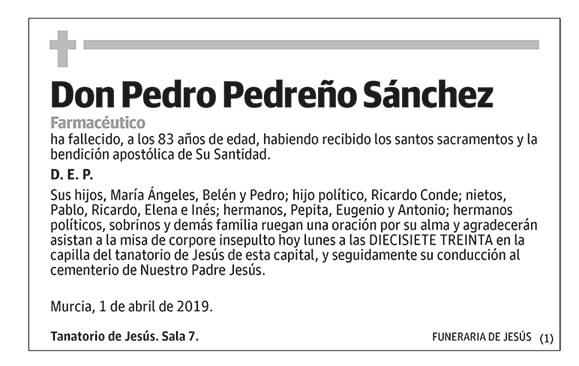 Pedro Pedreño Sánchez
