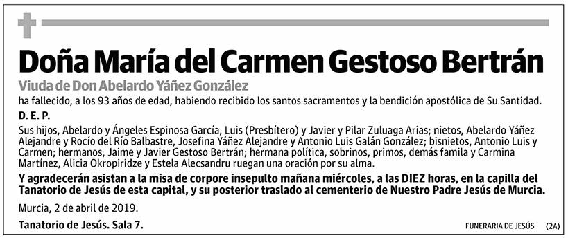María del Carmen Gestoso Bertrán