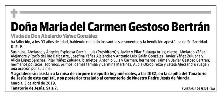 María de Carmen Gestoso Bertrán