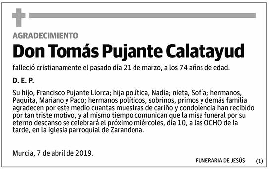 Tomás Pujante Calatayud