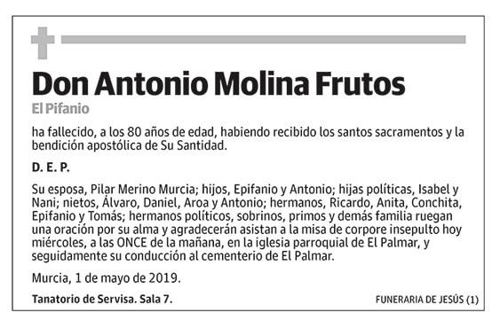 Antonio Molina Frutos