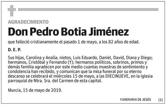 Pedro Botia Jiménez